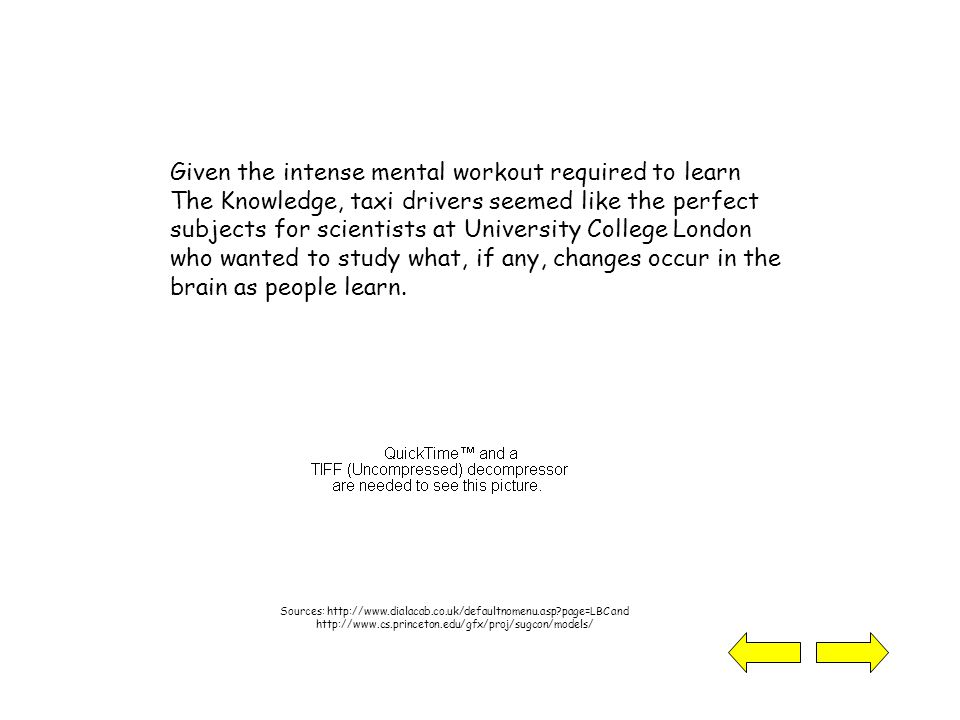 Given the intense mental workout required to learn The Knowledge, taxi drivers seemed like the perfect subjects for scientists at University College London who wanted to study what, if any, changes occur in the brain as people learn.