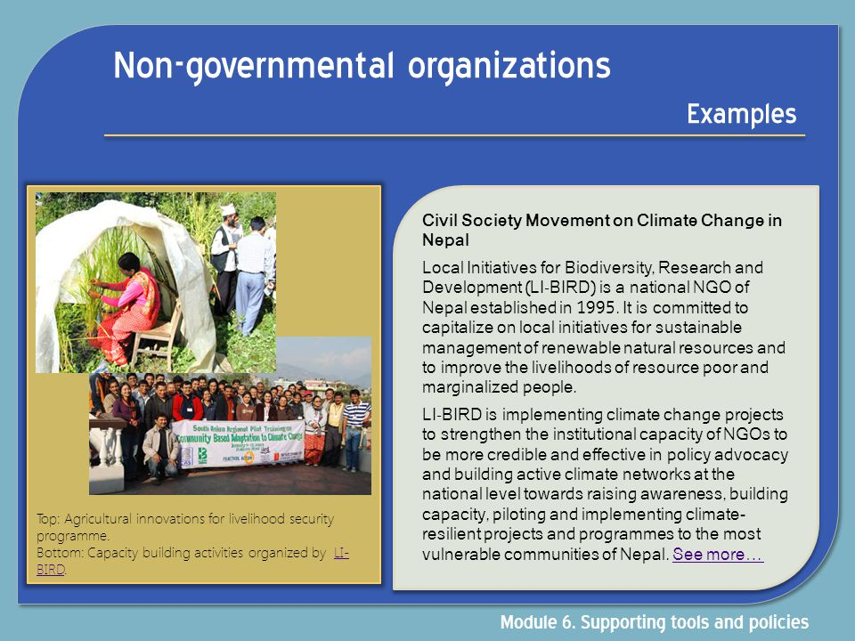 Non-governmental organizations Examples Civil Society Movement on Climate Change in Nepal Local Initiatives for Biodiversity, Research and Development