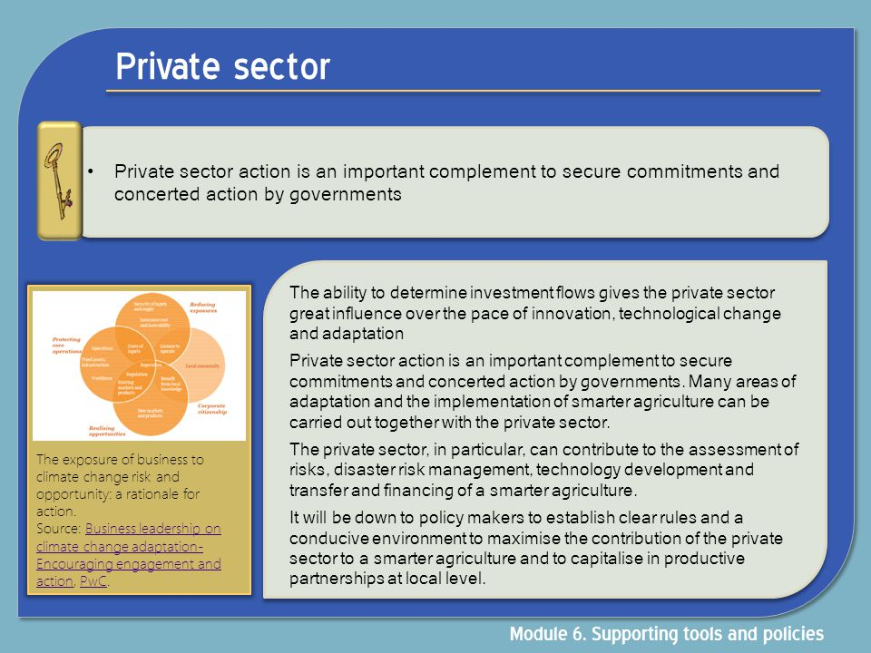 Private sector Private sector action is an important complement to secure commitments and concerted action by governments The ability to determine inv