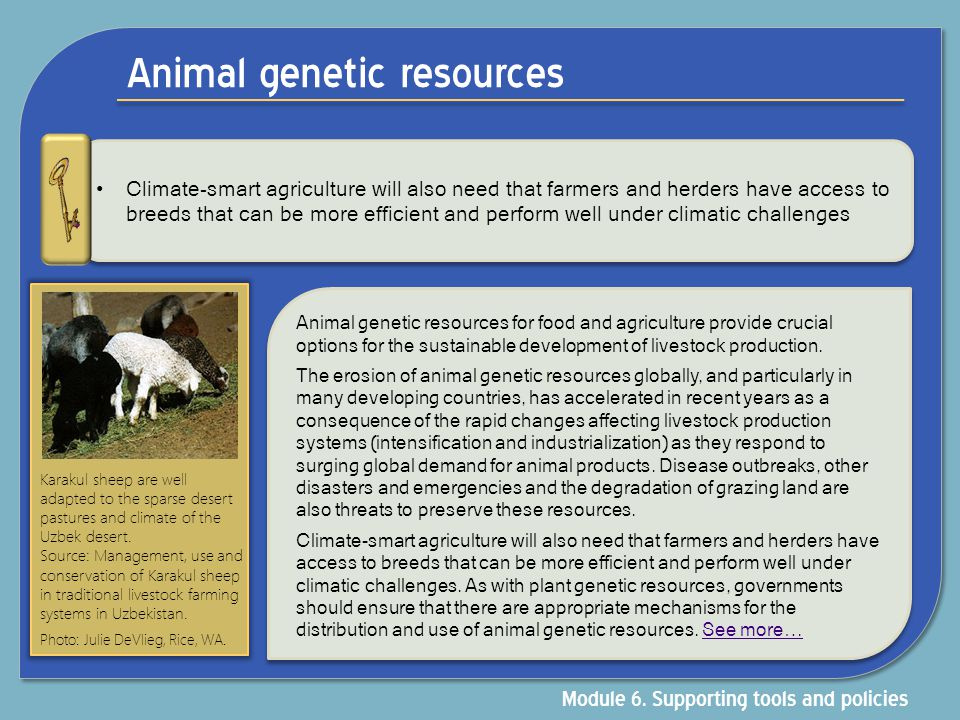 Animal genetic resources Climate-smart agriculture will also need that farmers and herders have access to breeds that can be more efficient and perfor