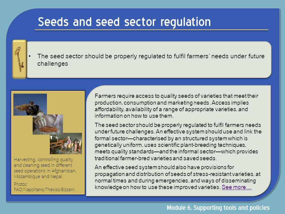 Seeds and seed sector regulation The seed sector should be properly regulated to fulfil farmers' needs under future challenges Farmers require access