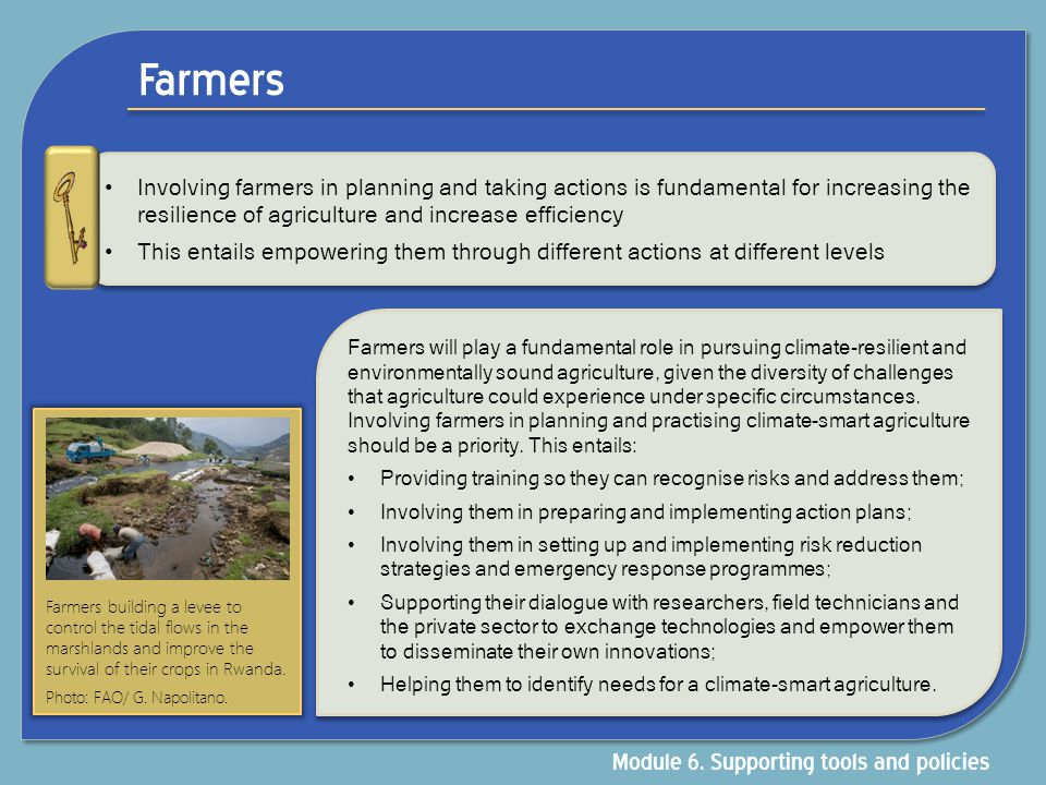 Private sector Examples Adaptation for Smallholders to Climate Change (AdapCC) supports coffee and tea farmers in developing strategies to cope with the risks and impacts of climate change The initiative was implemented as a Public-Private Partnership (PPP) by the British Fairtrade company Cafédirect and the Deutsche Gesellschaft für Internationale Zusammenarbeit (GIZ) GmbH (German Technical Cooperation).