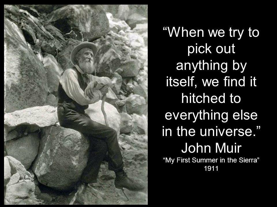 When we try to pick out anything by itself, we find it hitched to everything else in the universe. John Muir My First Summer in the Sierra 1911