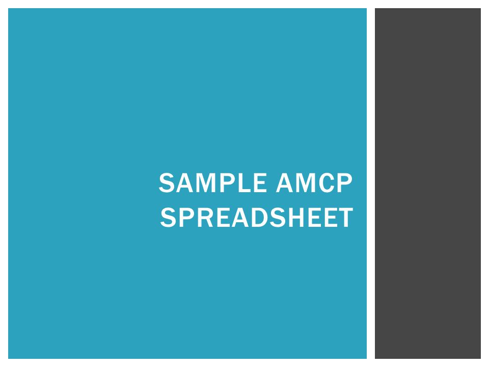 SAMPLE AMCP SPREADSHEET