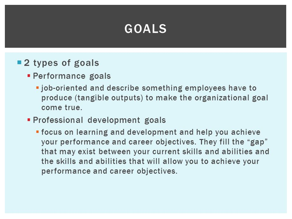 2 types of goals  Performance goals  job-oriented and describe something employees have to produce (tangible outputs) to make the organizational goal come true.