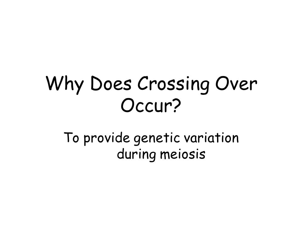 Why Does Crossing Over Occur To provide genetic variation during meiosis