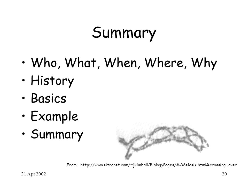 21 Apr 200220 Summary Who, What, When, Where, Why History Basics Example Summary From: http://www.ultranet.com/~jkimball/BiologyPages/M/Meiosis.html#c