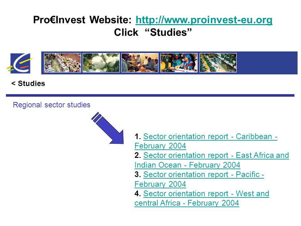 Pro€Invest Website: http://www.proinvest-eu.orghttp://www.proinvest-eu.org Click Studies < Studies Regional sector studies 1.