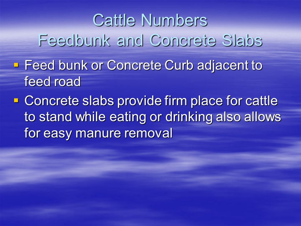 Cattle Numbers Feedbunk and Concrete Slabs  Feed bunk or Concrete Curb adjacent to feed road  Concrete slabs provide firm place for cattle to stand while eating or drinking also allows for easy manure removal