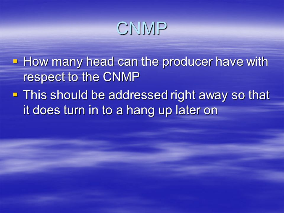 CNMP  How many head can the producer have with respect to the CNMP  This should be addressed right away so that it does turn in to a hang up later on