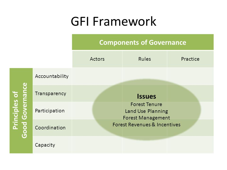 Components of Governance ActorsRulesPractice Accountability Transparency Participation Coordination Capacity GFI Framework Principles of Good Governance Issues Forest Tenure Land Use Planning Forest Management Forest Revenues & Incentives