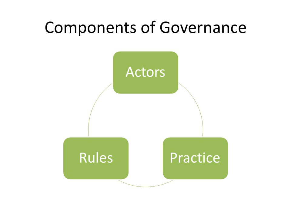Components of Governance ActorsPracticeRules