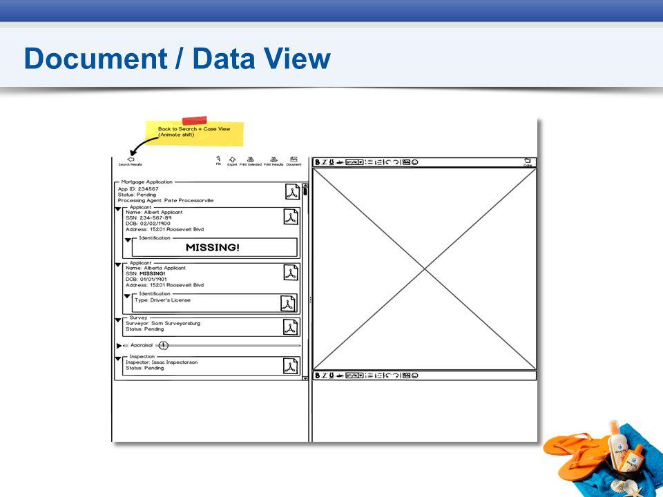 Document / Data View