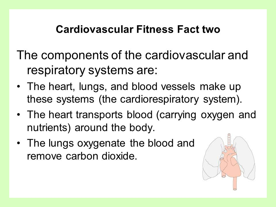 Cardiovascular Fitness Guidelines Fitness Guidelines Aerobic exercise on a regular basis (3-5 times per week, heart rate in the target zone, for 20 min or more) should provide you with a good level of fitness.