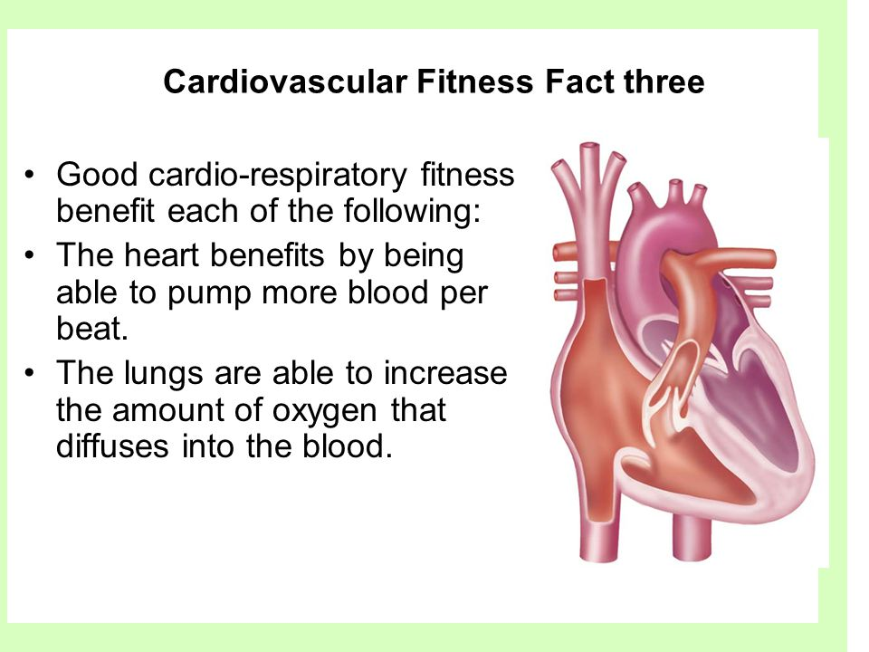 Cardiovascular Fitness Fact three Good cardio-respiratory fitness benefit each of the following: The heart benefits by being able to pump more blood p