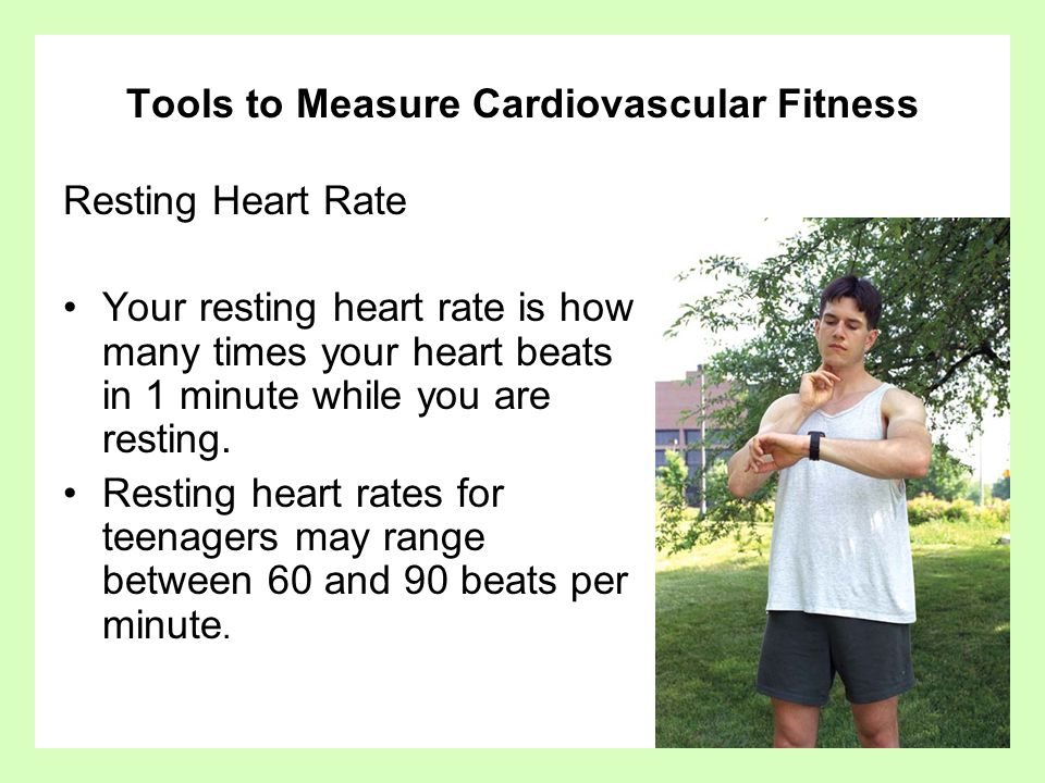Cardiovascular Fitness Fact Six Parts of the Cardiovascular system Heart –Pumps blood to the body Arteries –The arteries transport blood to the muscles and organs.
