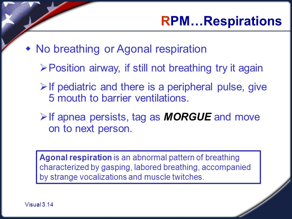 Visual 3.14 RPM…Respirations  No breathing or Agonal respiration  Position airway, if still not breathing try it again  If pediatric and there is a peripheral pulse, give 5 mouth to barrier ventilations.