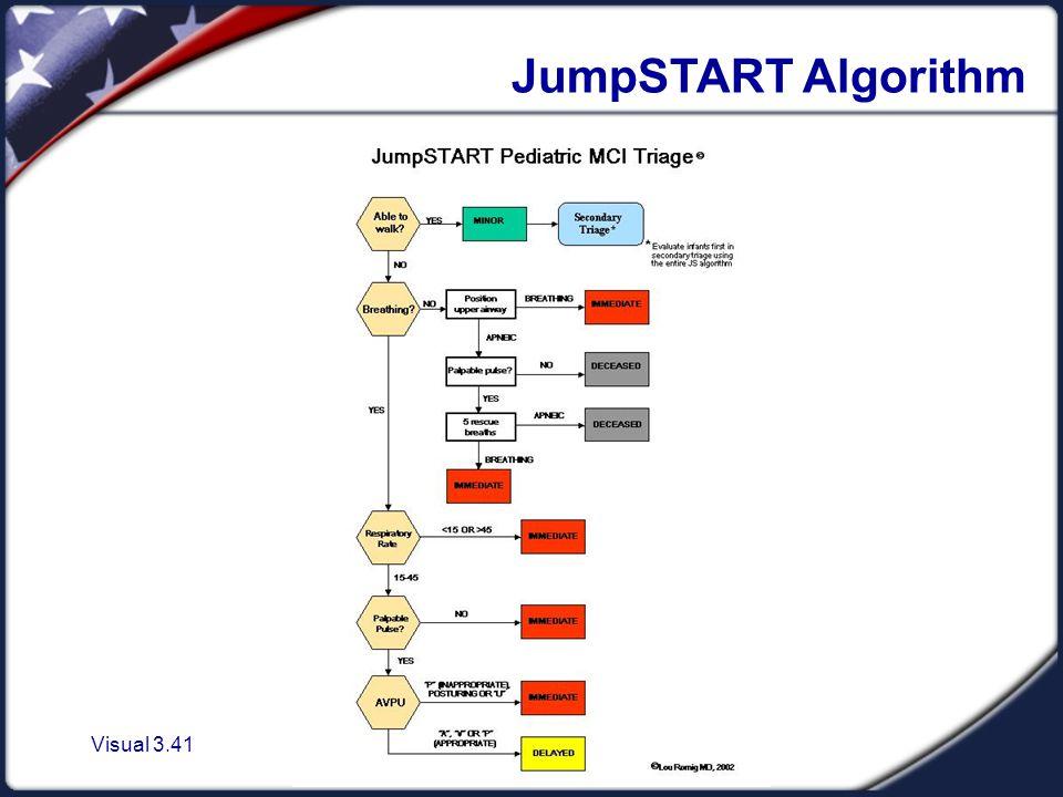 Visual 3.41 JumpSTART Algorithm