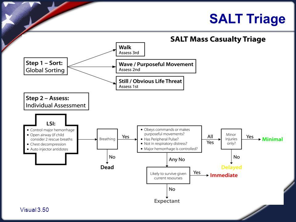 Visual 3.50 SALT Triage
