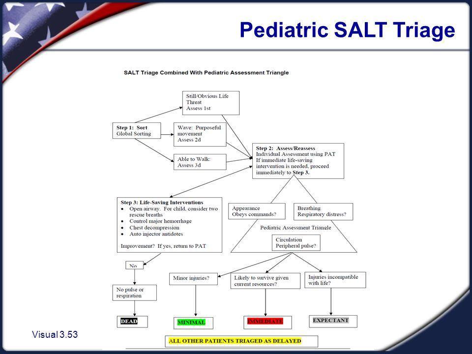 Visual 3.53 Pediatric SALT Triage