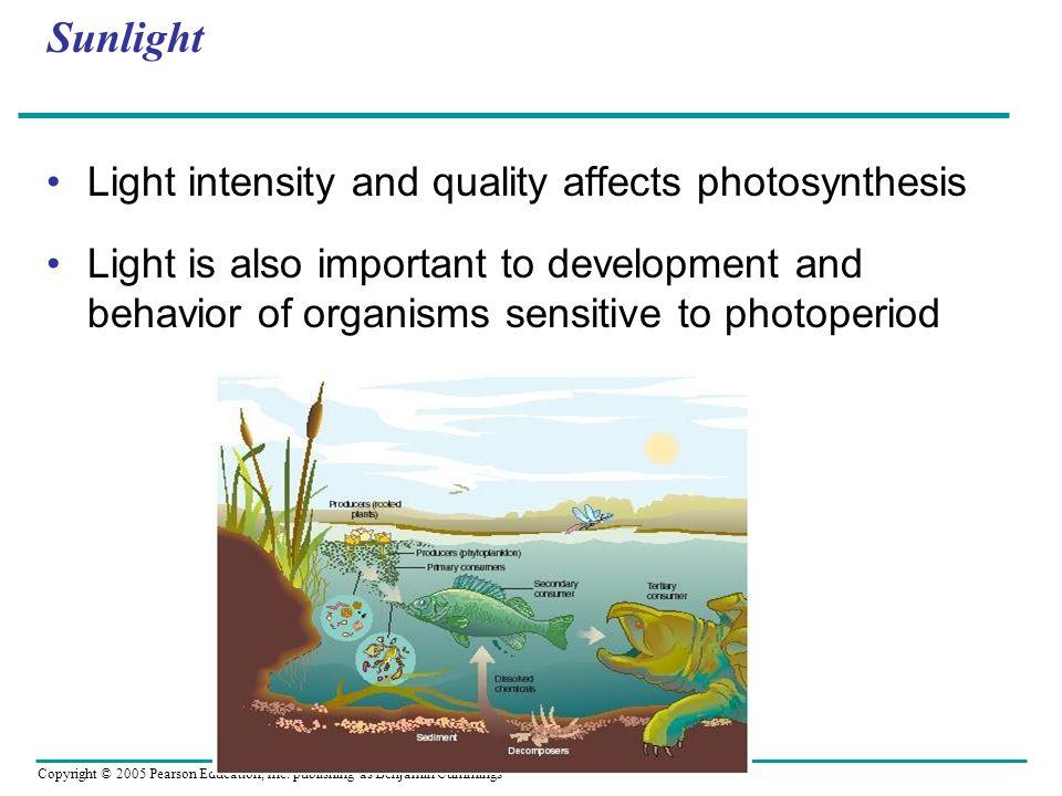 Copyright © 2005 Pearson Education, Inc. publishing as Benjamin Cummings Oligotrophic or Eutrophic?