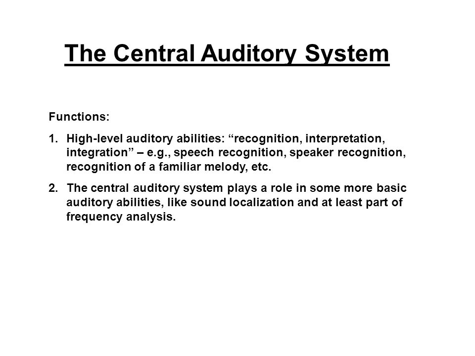 The Central Auditory System Functions: 1.High-level auditory abilities: recognition, interpretation, integration – e.g., speech recognition, speaker recognition, recognition of a familiar melody, etc.