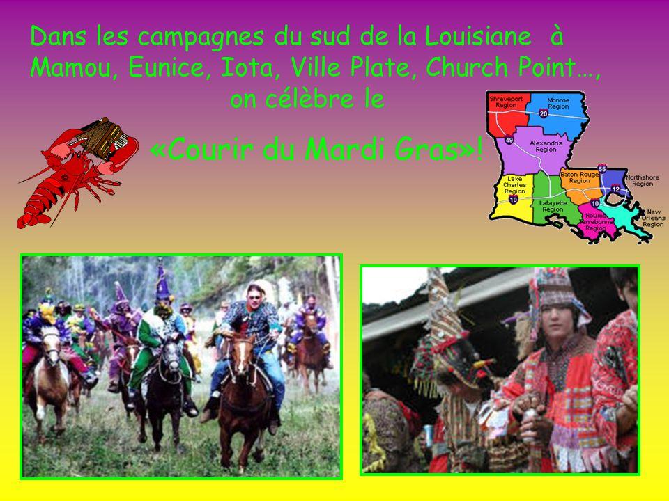 Dans les campagnes du sud de la Louisiane à Mamou, Eunice, Iota, Ville Plate, Church Point…, on célèbre le «Courir du Mardi Gras»!