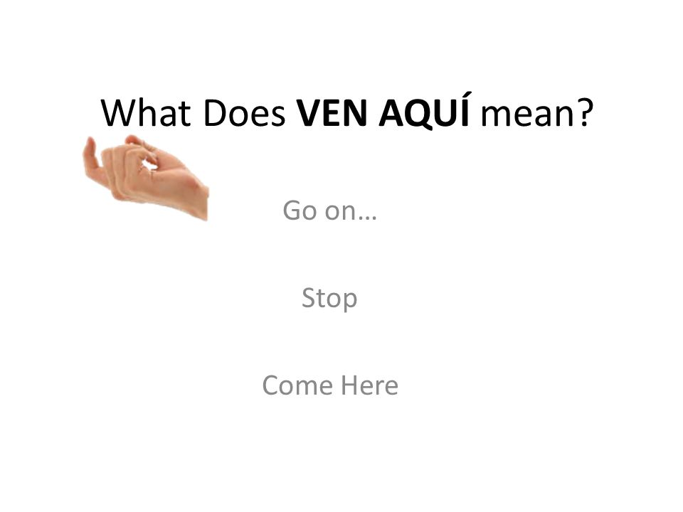 What Does VEN AQUÍ mean Go on… Stop Come Here