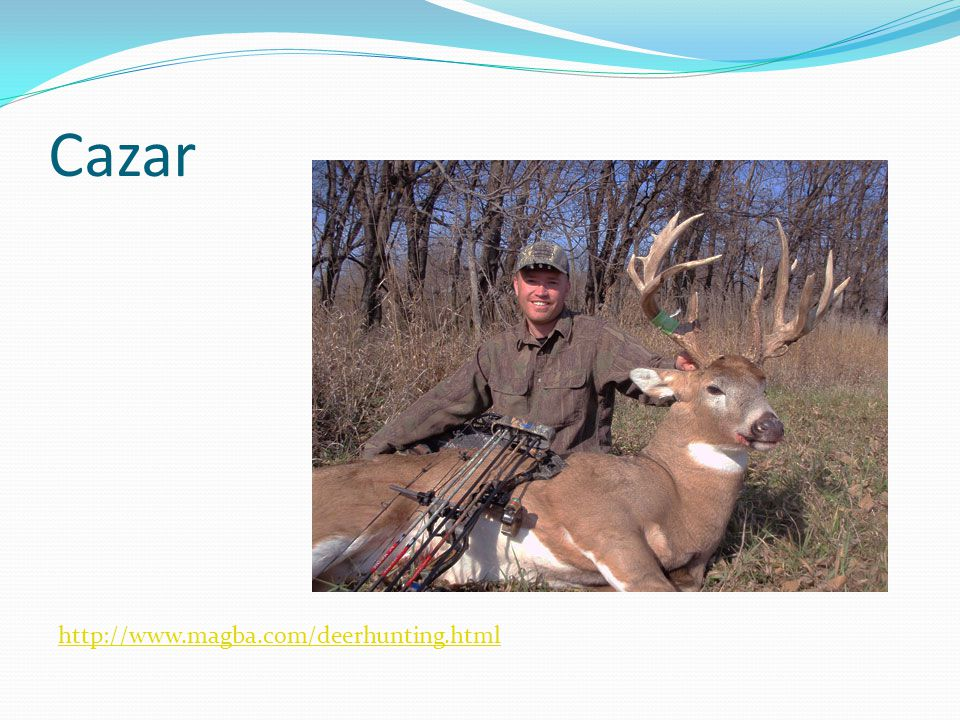 Cazar http://www.magba.com/deerhunting.html