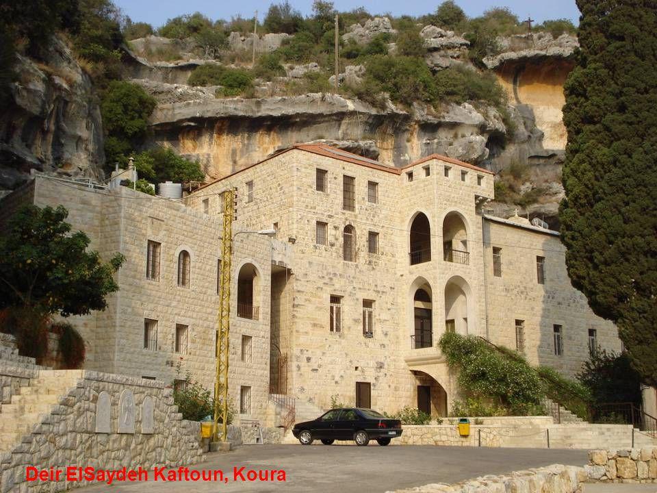 Deir ElSaydeh Kaftoun, Koura