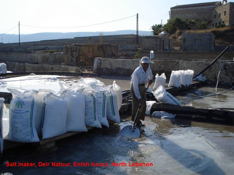 Salt maker, Deir Natour, Enfeh Koura, North Lebanon