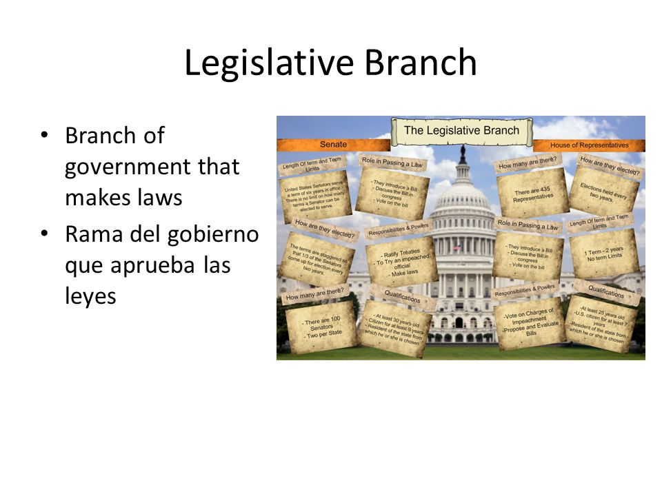 Legislative Branch Branch of government that makes laws Rama del gobierno que aprueba las leyes