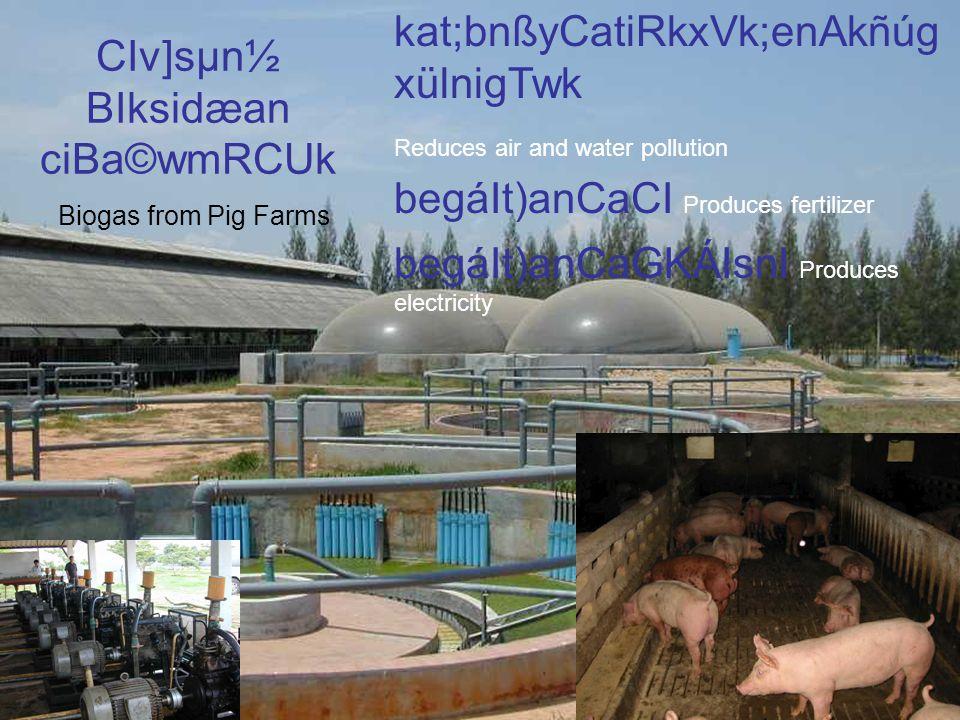 CIv]sµn½ BIksidæan ciBa©wmRCUk Biogas from Pig Farms kat;bnßyCatiRkxVk;enAkñúg xülnigTwk Reduces air and water pollution begáIt)anCaCI Produces fertilizer begáIt)anCaGKÁIsnI Produces electricity
