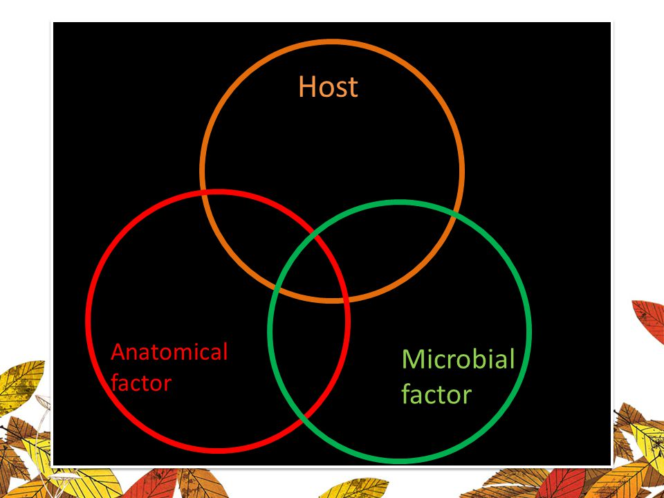 Host Anatomical factor Microbial factor