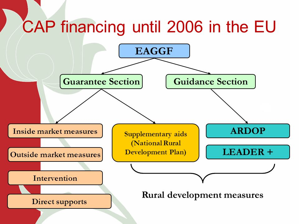 CAP financing until 2006 in the EU EAGGF Guarantee SectionGuidance Section Inside market measures Outside market measures Intervention Direct supports Supplementary aids (National Rural Development Plan) ARDOP LEADER + Rural development measures