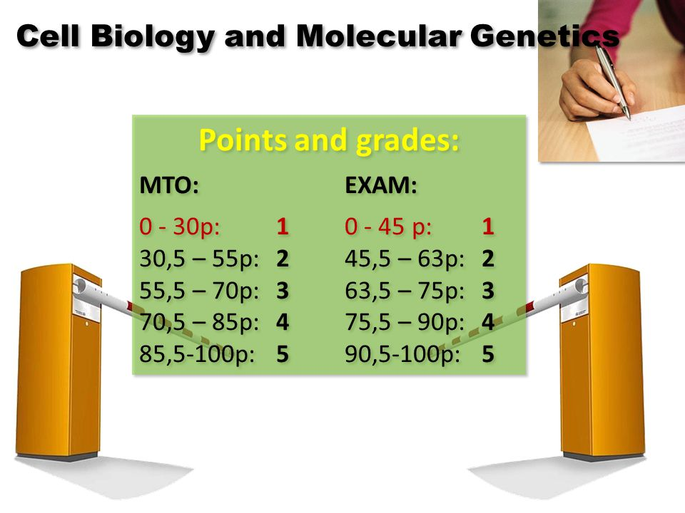 Points and grades: MTO:EXAM: 0 - 30p:10 - 45 p:1 30,5 – 55p:245,5 – 63p:2 55,5 – 70p:363,5 – 75p:3 70,5 – 85p:475,5 – 90p:4 85,5-100p:590,5-100p:5 Points and grades: MTO:EXAM: 0 - 30p:10 - 45 p:1 30,5 – 55p:245,5 – 63p:2 55,5 – 70p:363,5 – 75p:3 70,5 – 85p:475,5 – 90p:4 85,5-100p:590,5-100p:5 Cell Biology and Molecular Genetics