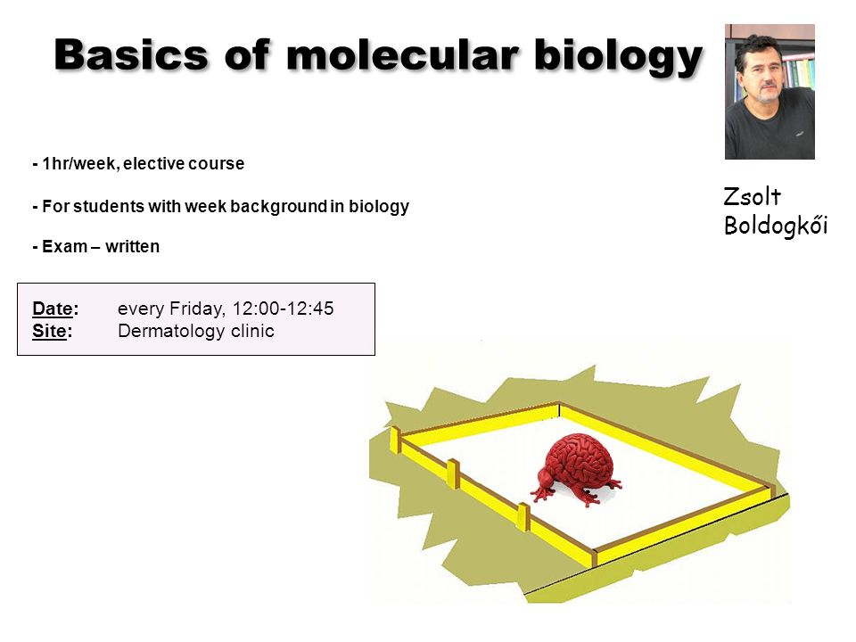 Basics of molecular biology - 1hr/week, elective course - For students with week background in biology - Exam – written Date:every Friday, 12:00-12:45 Site: Dermatology clinic Zsolt Boldogkői