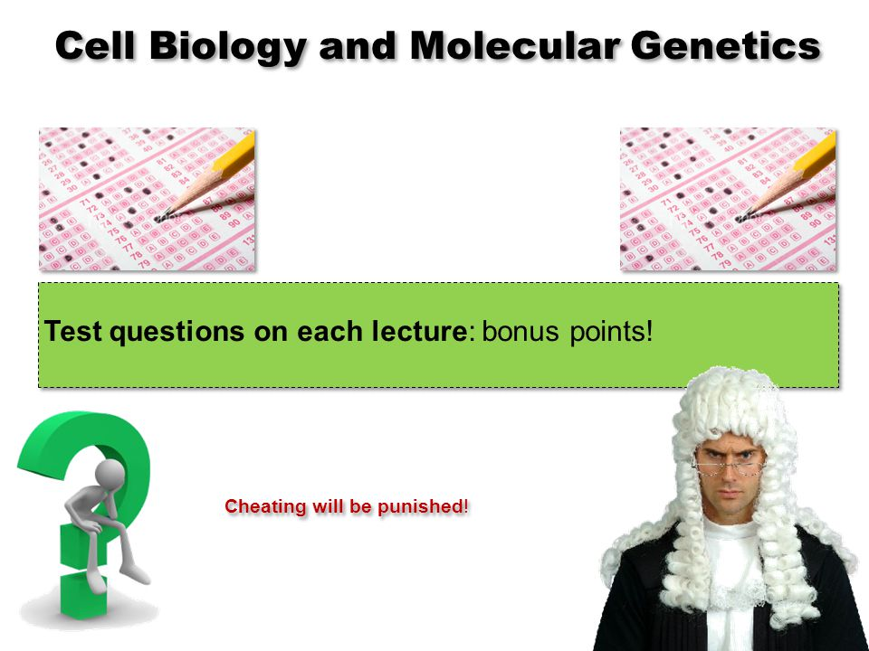 Test questions on each lecture: bonus points.