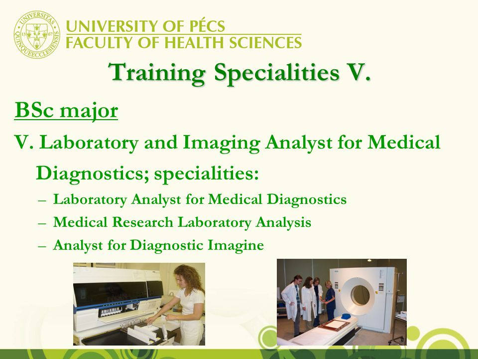 Training Specialities V. BSc major V.