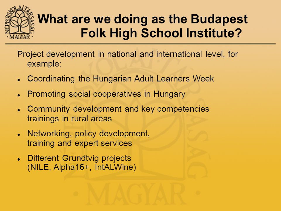 What are we doing as the Budapest Folk High School Institute.