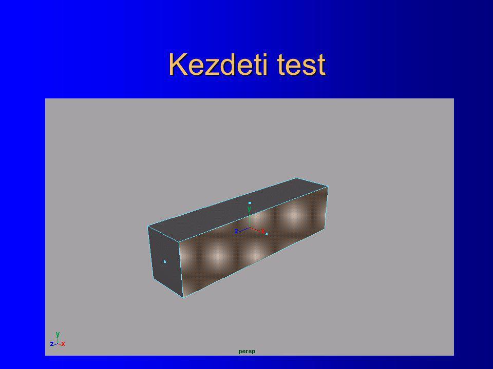 Kezdeti test