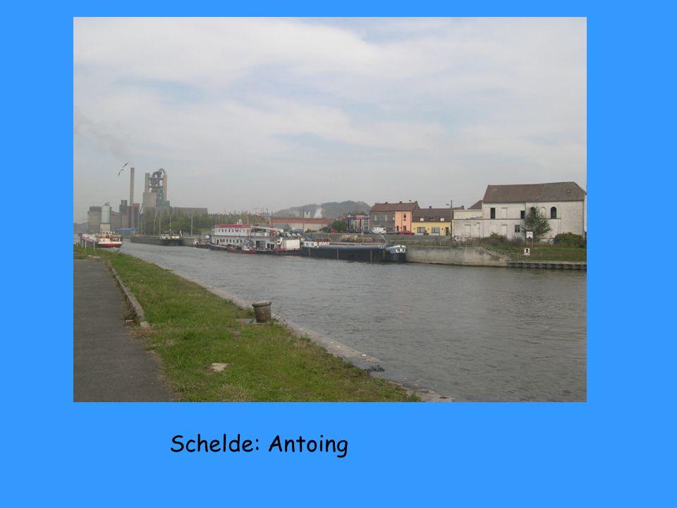 Schelde: Mortangne du Nord