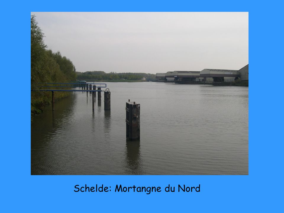 Schelde: Mortangne du Nord