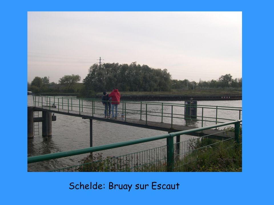 Schelde: Bruay sur Escaut