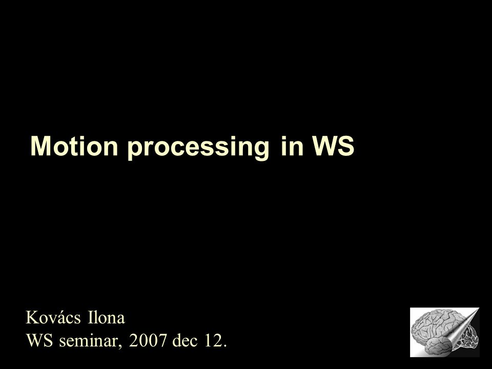 Motion processing in WS Kovács Ilona WS seminar, 2007 dec 12.