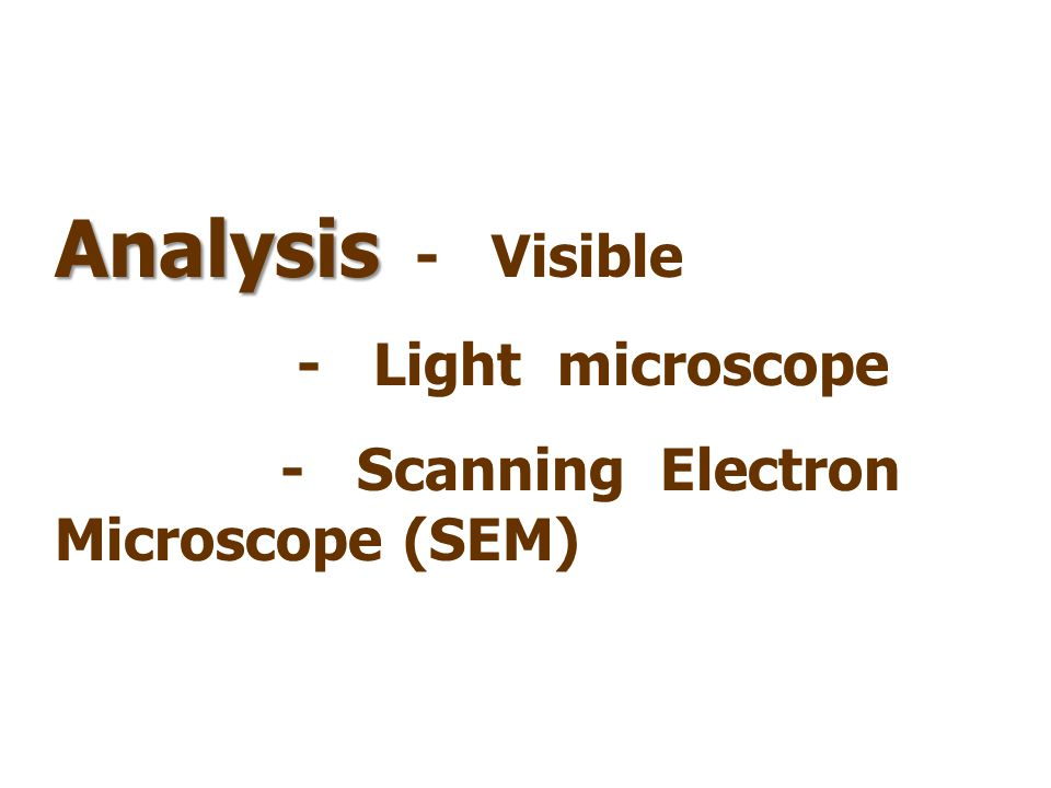 Analysis Analysis - Visible - Light microscope - Scanning Electron Microscope (SEM)