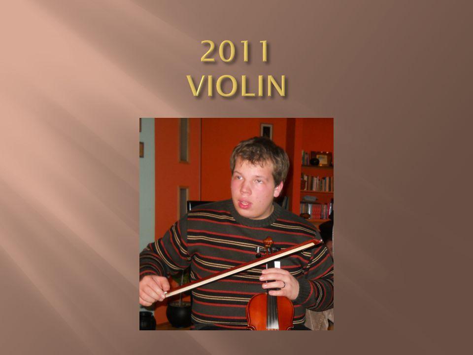 2011 VIOLIN