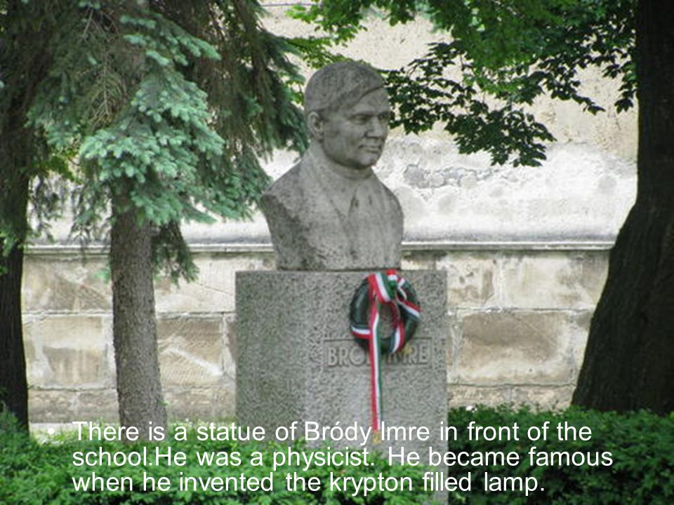 There is a statue of Bródy Imre in front of the school.He was a physicist.