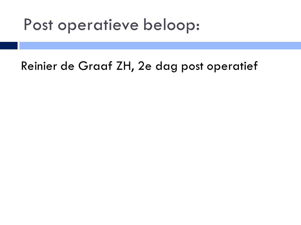 Post operatieve beloop: Reinier de Graaf ZH, 2e dag post operatief