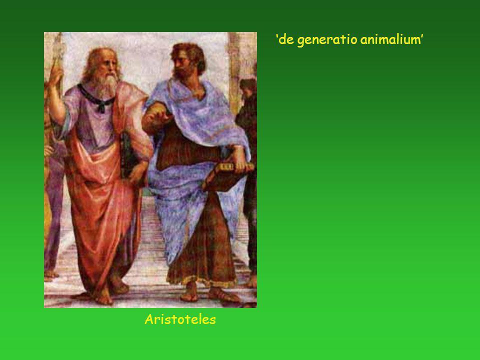 Aristoteles 'de generatio animalium'